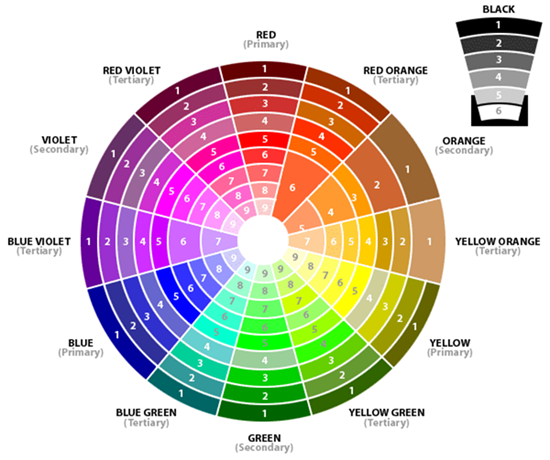 The color wheel with numbered shades
