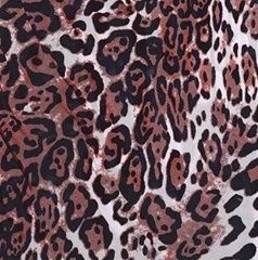 Jaguar pattern